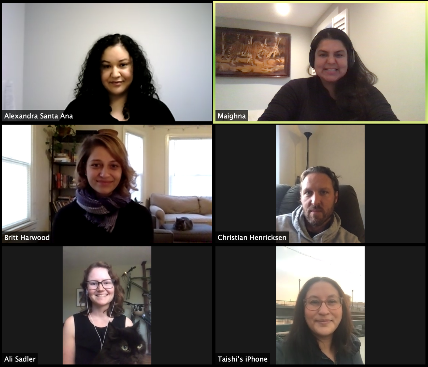 Screenshot of Youth Justice Team on Zoom